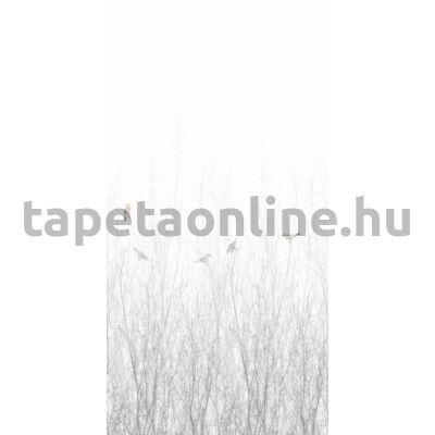 Nature 5283
