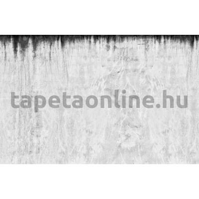 Communication p131901-9
