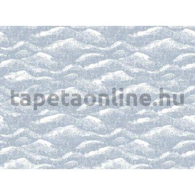 Shades P231401-8